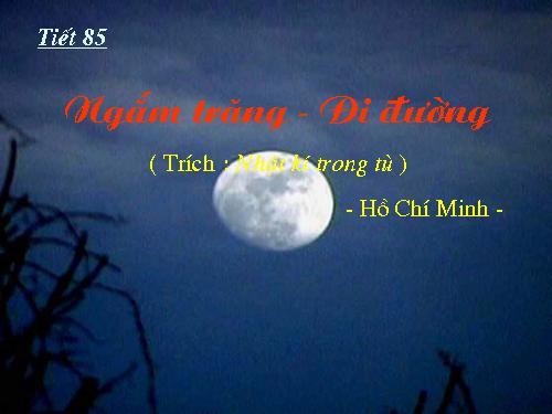 Hướng dẫn soạn bài Ngắm trăng của Hồ Chí Minh chi tiết
