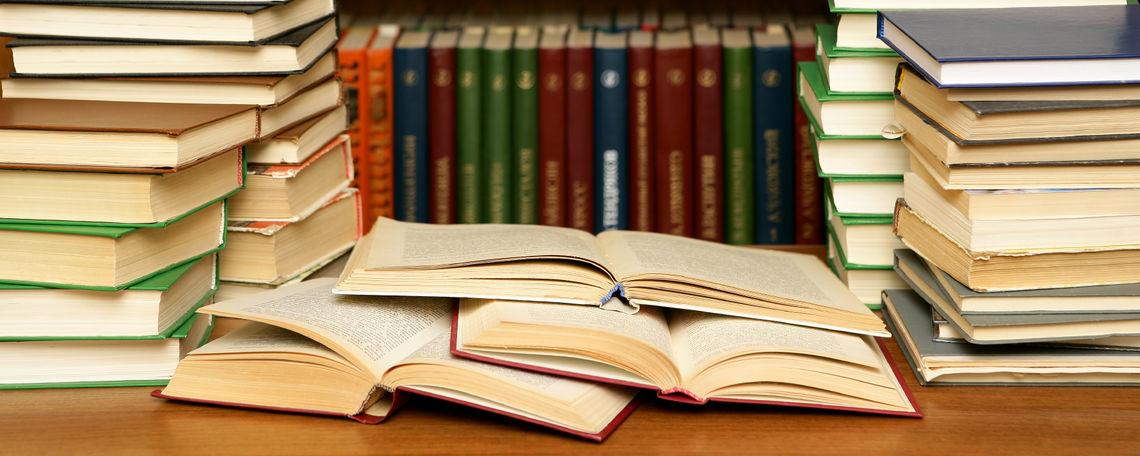 Soạn bài: Luyện tập vận dụng kết hợp các phương thức biểu đạt trong bài văn nghị luận